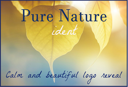 Download Logo Reveal Music | Pure Nature Ident | 100% Royalty Free Music by SoundRoseStudio