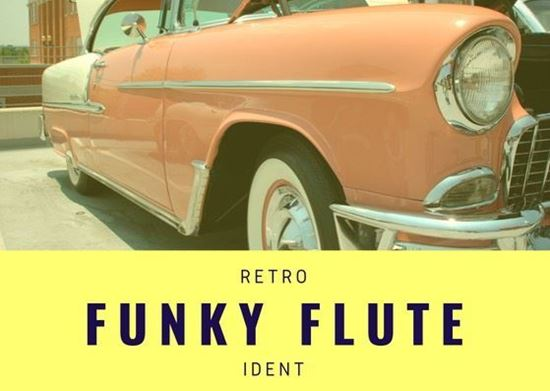 Funky Flute Ident - Royalty Free Music by SoundRoseStudio